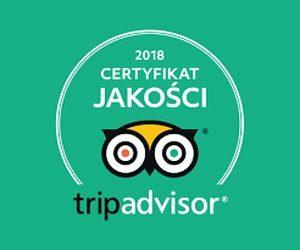 Otrzymaliśmy certyfikat od TripAdvisor - Thaibali masaże tajskie w Krakowie